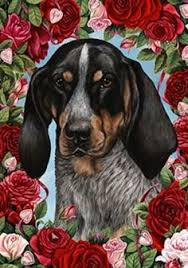 bluetick coonhound apparel animal blueprint company bluetick coonhound dog blueprint dog