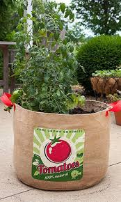 tomato grow bag organic fertilizer gardening supplies and planters