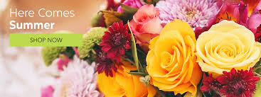 flower shops in san diego san diego florist flower delivery by elizabeth marks floral design