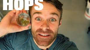 ben lolli wob drink it intern on vimeo