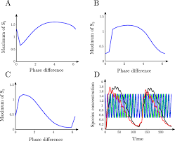 positional information from oscillatory phase shifts insights
