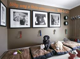 mudroom for dogs hgtv