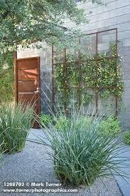 Trellis Garden Ideas Wall Trellis Ideas Best Wall Trellis Ideas On Trellis Garden Wall