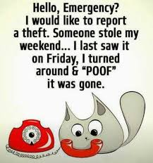 Thursday Meme Funny - best funny quotes top 27 thursday meme quotes daily leading