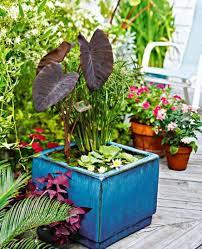 Container Water Garden Ideas Top 10 Container Gardens For Your Patio Rojabonita