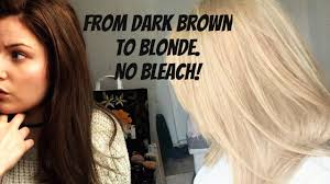 putting silver on brown hair how to go from dark brown to blonde no bleach no damage dyed