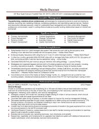 Venture Capital Resume Free Chief Financial Officer Cfo Resume Example Officer Resume