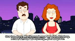 Family Guy Meme - family guy memes family guy marijuana legal family guy