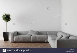 sofa in empty room parquet on the floor interior plant on the