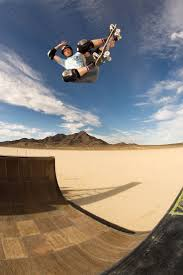 64 best thrashing images on pinterest tony hawk hawks and