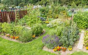 gorgeous flower and vegetable garden layout how to design a