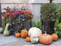 5 fall container gardening ideas that celebrate autumn