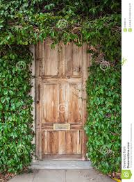 wooden leaves wall wooden door with green leaves stock photo image 57969714