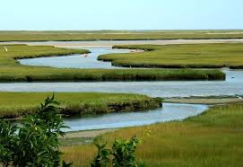 The Marsh Restaurant Cape Cod - salt marsh fort hill eastham ma lovely cape cod pinterest