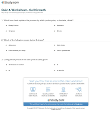 quiz u0026 worksheet cell growth study com