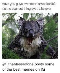 25 best memes about imgure imgure memes