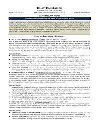cfo resume sample logistics sales executive resume example executive resume free blank resume template sample cfo executive cv sample example executive resume