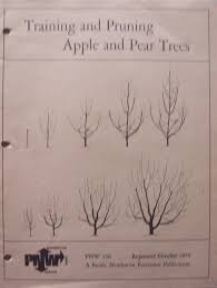 cheap apple pruning find apple pruning deals on line at alibaba