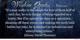 education quotes henry david thoreau 2017 wisdom quote