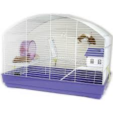 Petsmart Hamster Cages Hamsters Cages At Petsmart