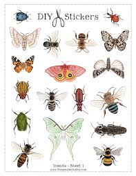 printable insect stickers 36 digital diy stickers