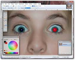 use paint net to remove red eye from flash photography