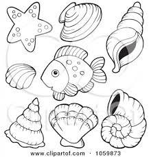 free printable seashell coloring pages for kids in shimosoku biz