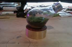 How To Make A Light Bulb How To Make A Light Bulb Terrarium Diy Nerd Forum