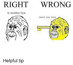 Monkey Face Meme - 25 best memes about le monkey face le monkey face memes