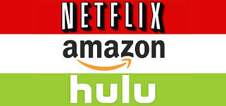 Seeking Netflix Or Hulu Netflix Loses Variety Should It Lose Your Business The Paper Wolf