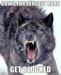Settlers Of Catan Meme - settlers of catan angry wolf funny