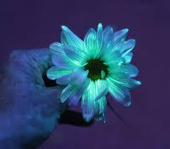 12 Magical GlowInTheDark DIY Projects