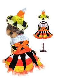 Dog Costumes Halloween 63 Halloween Dog Costumes Images Pet