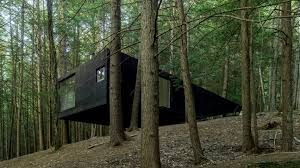 cabin by jacobschang is set among trees in upstate new york