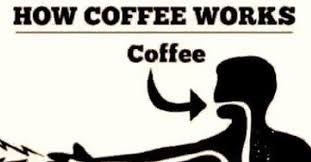 Funny Coffee Memes - here are 30 more hilarious coffee memes to perk up your day 22
