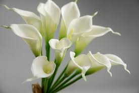cala lilies real touch calla wedding bouquet in white 14