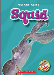 thanksgiving is by gail gibbons sea turtles by gail gibbons scholastic