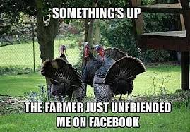 Happy Thanksgiving Meme - 20 funny thanksgiving day photos comics and memes