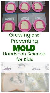 1048 best science ideas for kids images on pinterest science