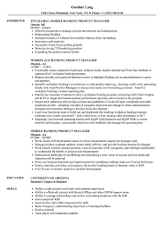Product Management Resume Samples Banking Product Manager Resume Samples Velvet Jobs