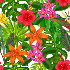 tropical wrapping paper seamless pattern with tropical plants leaves and flowers