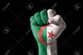 Algerian Flag Low Key Picture Of A Fist Painted In Colors Of Algeria Flag Stock