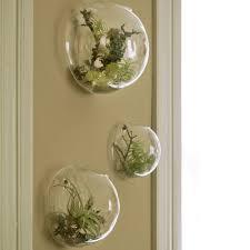 3 pcs set glass wall bubble terrariums wall mounted planter vase
