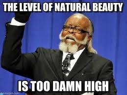Natural Beauty Meme - the level of natural beauty too damn high meme on memegen