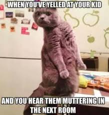Tantrum Meme - best parenting memes about toddler tantrums