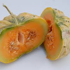 fond blanc cuisine prescott fond blanc melon seeds frozen seed capsules
