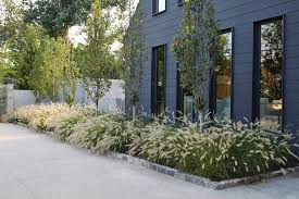 ornamental grass border landscape transitional with napa metal wall