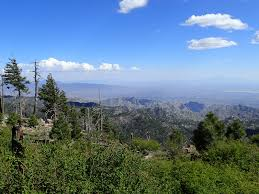 Mt Lemmon Hiking Trails Map The Pursuit Of Life Hiking Mt Lemmon Via Marshall Gulch Trail