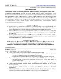 executive resume service good resume writing service essay on grandmother rhetorical