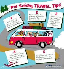 travel safety images Pet travel safety west charleston animal hospital jpg